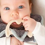 Teething neck Grey